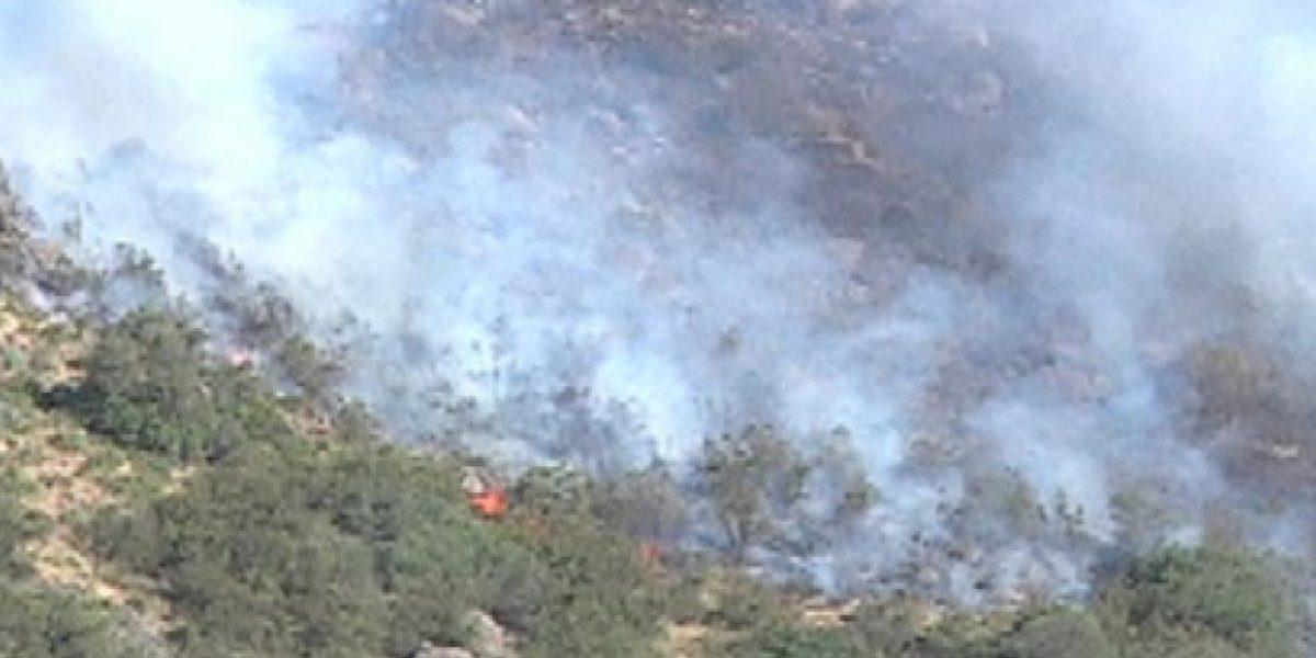 Más de cien hectáreas quemadas deja hasta el momento incendio en San José de Maipo