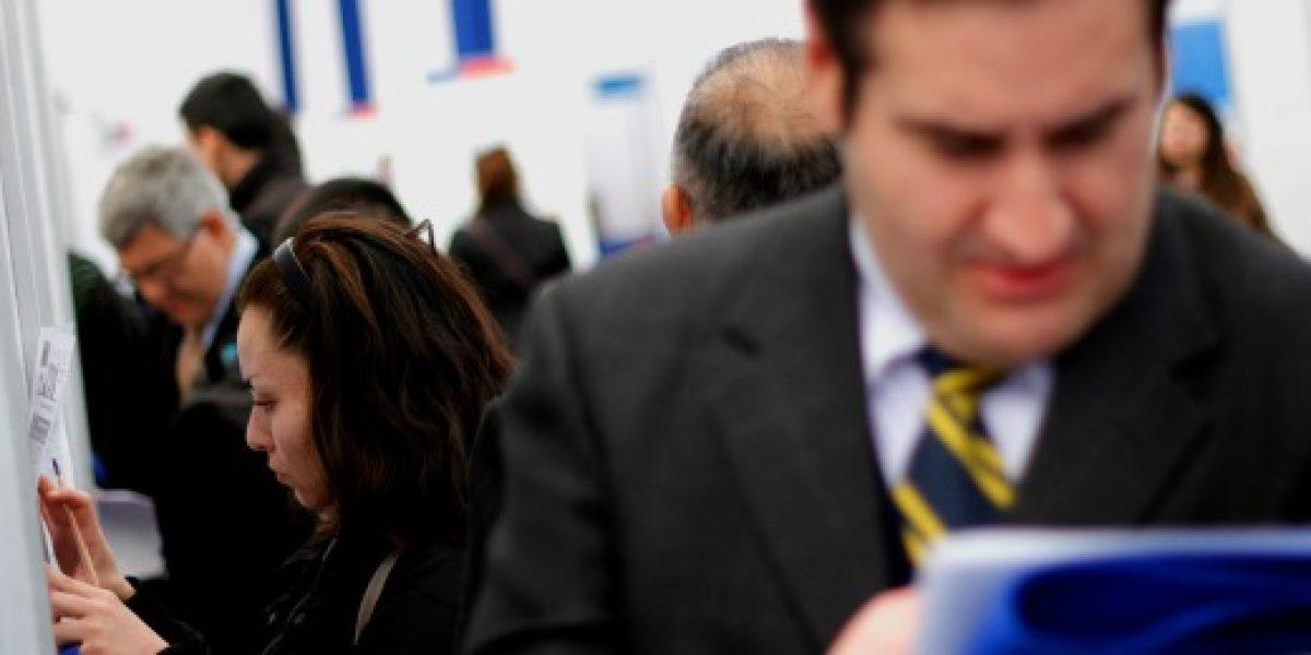 Más de mil puestos de trabajo se ofrecen en nueva feria laboral