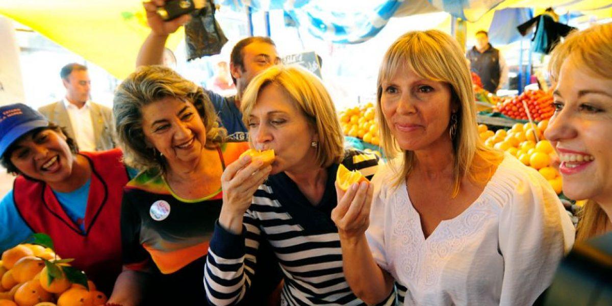 Fotos: Evelyn Matthei recorrió una feria libre junto a Cecilia Morel