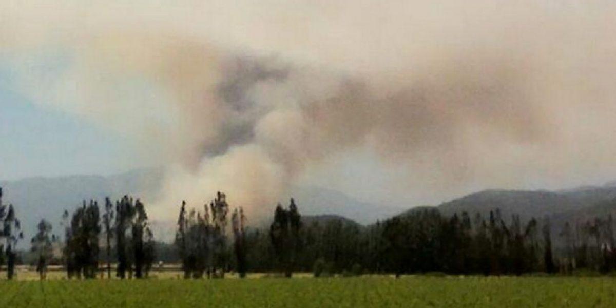 Onemi declara Alerta Roja para la comuna de Casablanca por incendio forestal