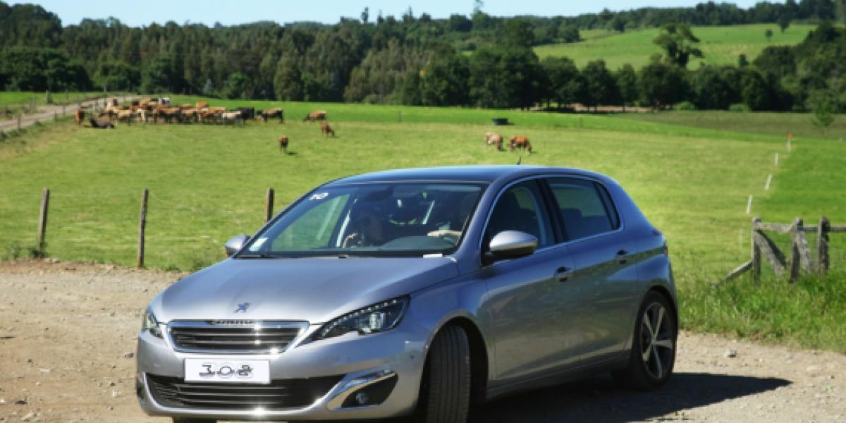 Llega a Chile el nuevo Peugeot 308