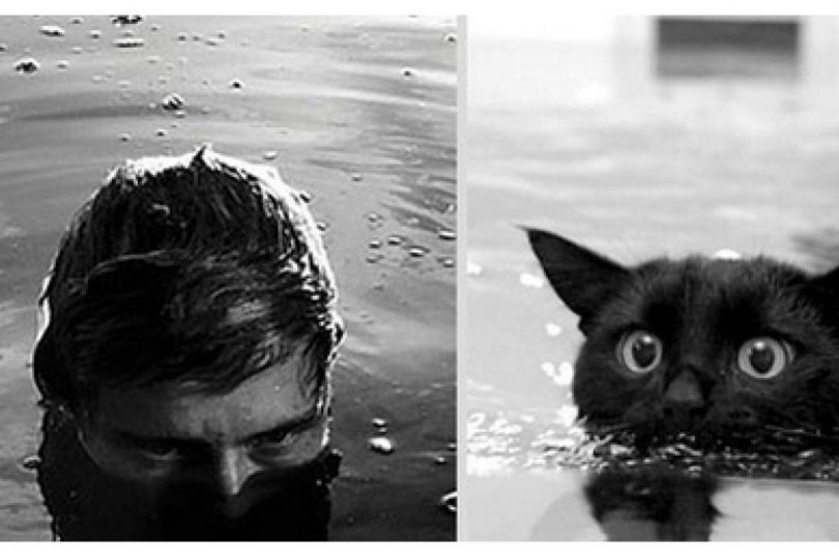 Foto:Fotos: antidepresivo.net. Imagen Por: