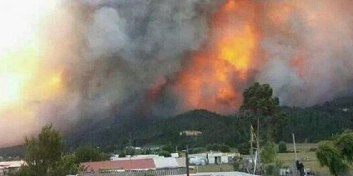 Alerta Roja en Arauco por incendio forestal fuera de control