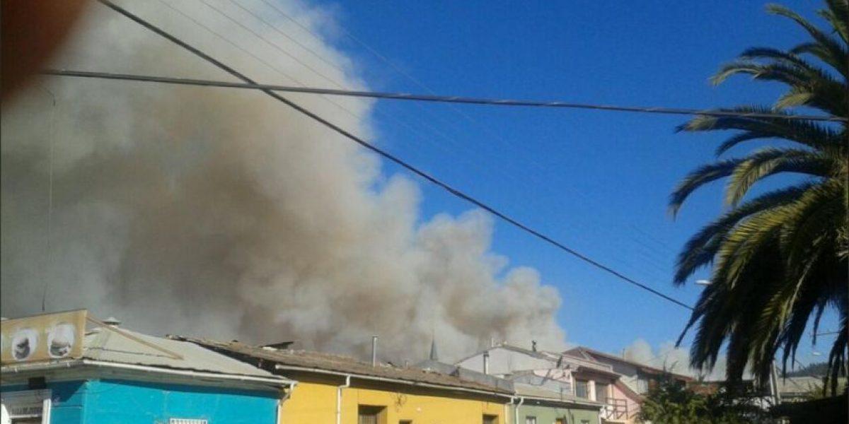 Fotos: Incendio forestal que afecta a Constitución amenaza a viviendas