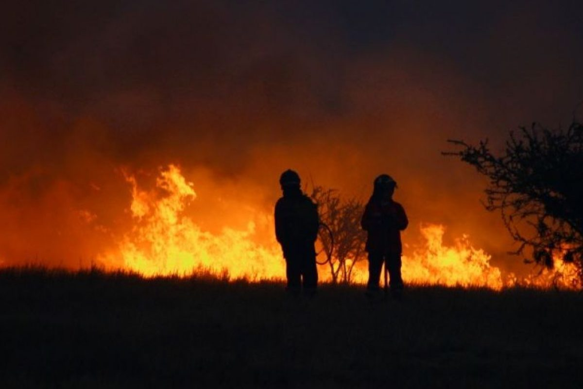 Foto:Equipo FirePhoto Chile. Imagen Por: