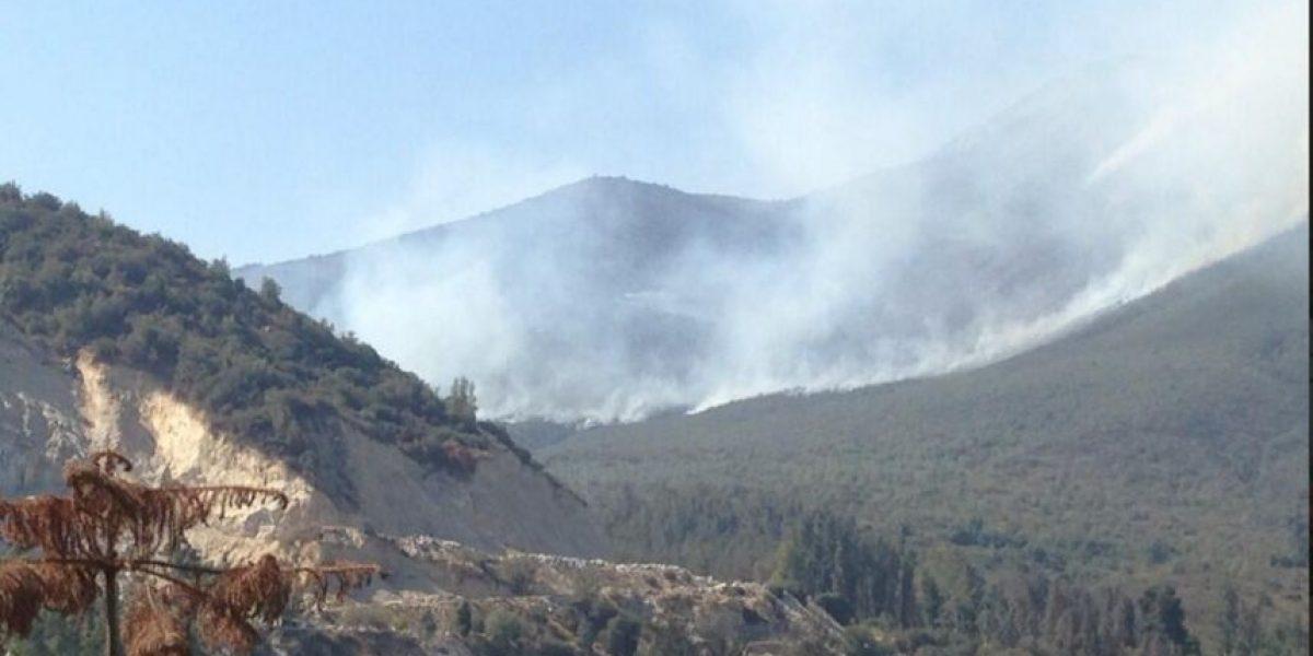 Fotos: Incendio forestal en el Cajón del Maipo mantiene en alerta a vecinos