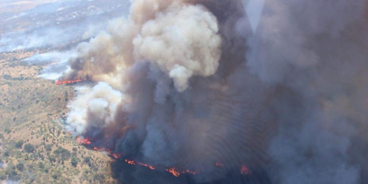 [FOTOS] Incendios forestales: Hectáreas consumidas son un 128% más que el promedio