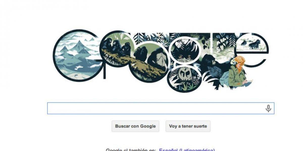 GALERIA: Google dedica su doodle Dian Fossey: Famosa zoóloga estadounidense