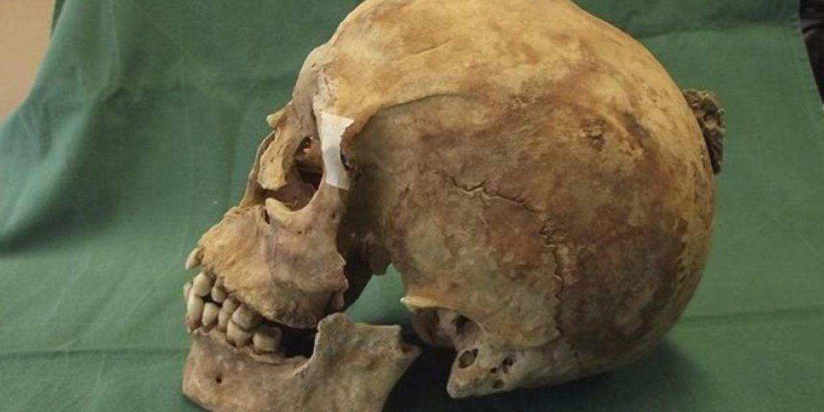 Identifican restos de Alfredo el Grande en el almacén de un museo inglés