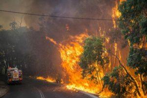 Esta foto tomada el 12 de enero de 2014 y facilitada por el Departamento de Bomberos y Servicios de Emergencia de Australia (DFES) muestra un reguero de pólvora a lo largo del borde de la carretera junto a un camión de bomberos en el área de Stoneville, un suburbio al este de Perth en el estado de Western, Australia. Foto:AFP. Imagen Por: