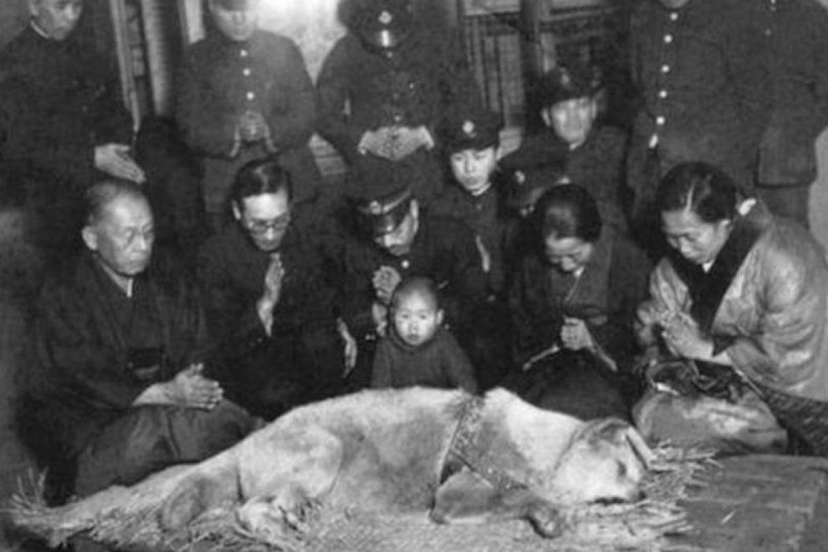 El día en que murió, fue noticia en diversas partes de Japón. Se menciona que la mujer que aparece a la derecha de la fotografía era la viuda del profesor. Foto:tumblr.com. Imagen Por: