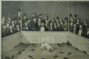 "Esta pintura celebra al perro terrier ""Major"" en su famoso acto de matar a 100 ratas Foto:http://blackandwtf.tumblr.com/. Imagen Por:"