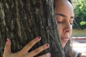 Atracción a frotarse contra los árboles. Foto:Flickr image. Imagen Por: