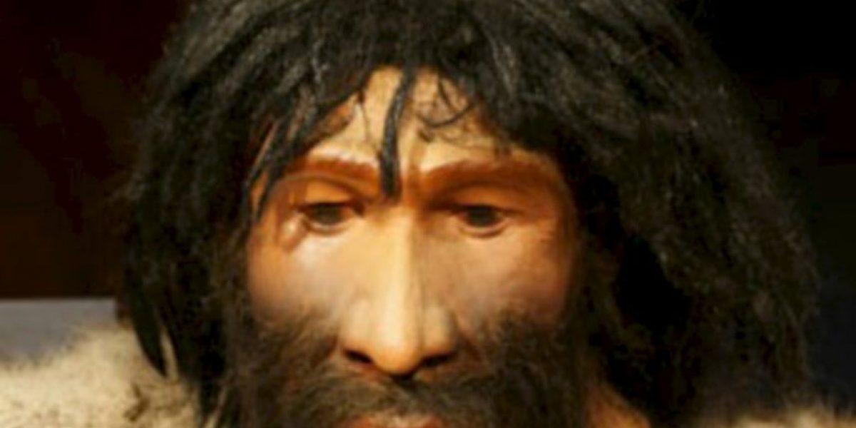 Estudio de Harvard: El hombre moderno tiene hasta 1.4% de genes neandertales