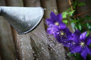 El agua siempre es vital. Foto:getty images. Imagen Por: