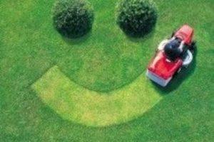 Sé feliz haciendo tu espacio verde Foto:Pinterest image. Imagen Por: