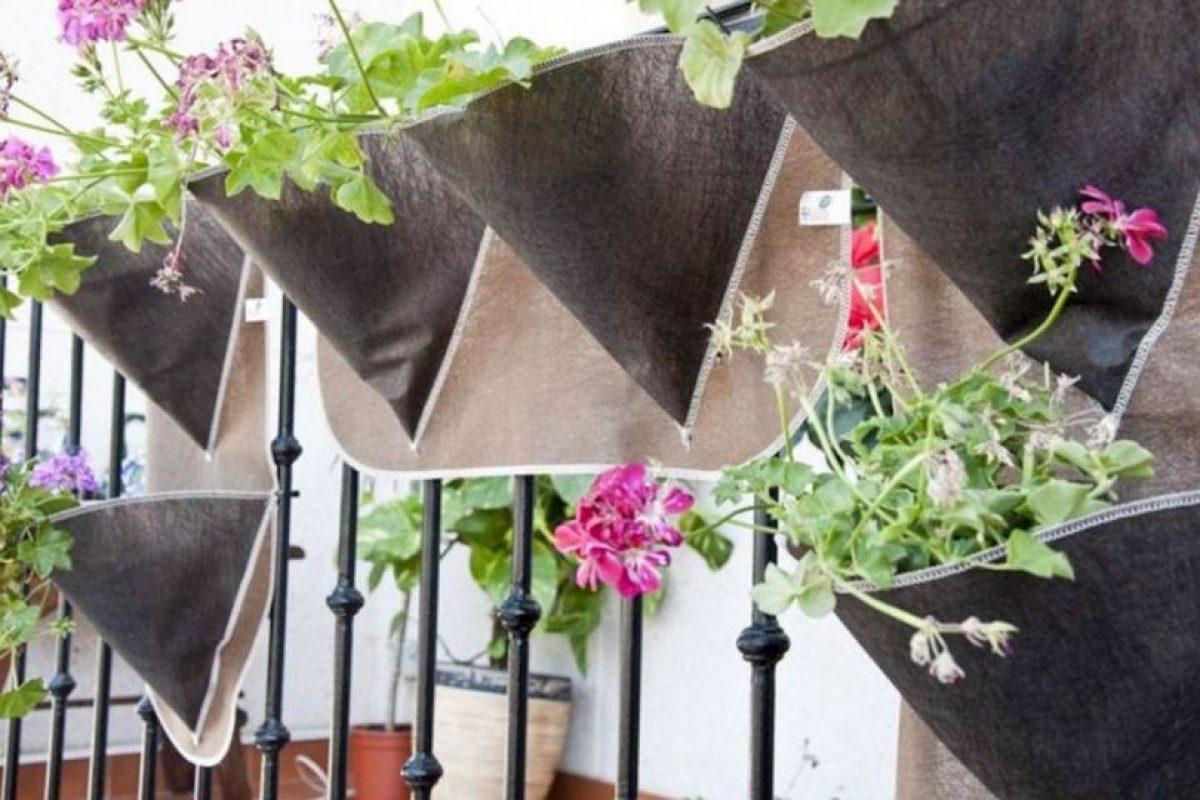 Además del abono, deben recordar regar sus plantas. Pueden utilizar una regadera casera Foto:Pinterest image. Imagen Por: