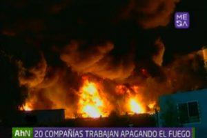 Foto:captura Mega. Imagen Por: