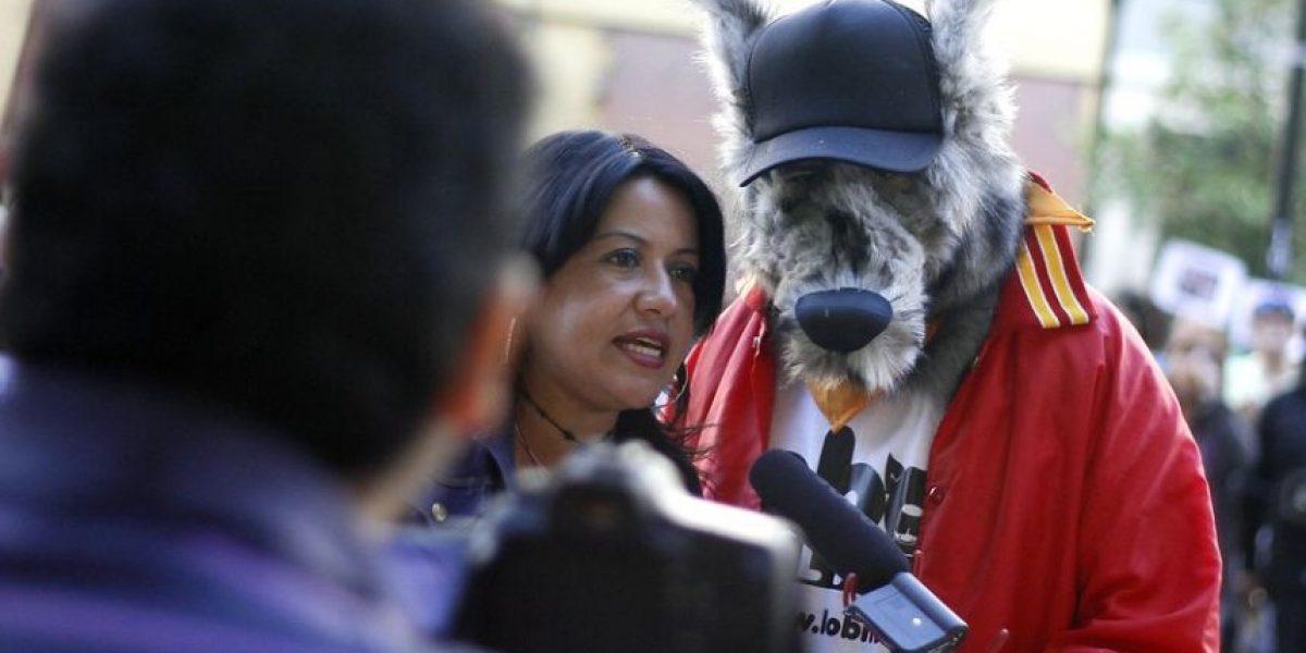 [FOTOS] Animalistas protestan en el SAG por polémica nueva