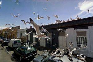 Foto:Google Street View. Imagen Por: