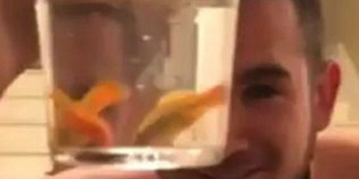 #Neknominate: Sujeto se filma bebiendo un vaso con sidra y tres peces vivos