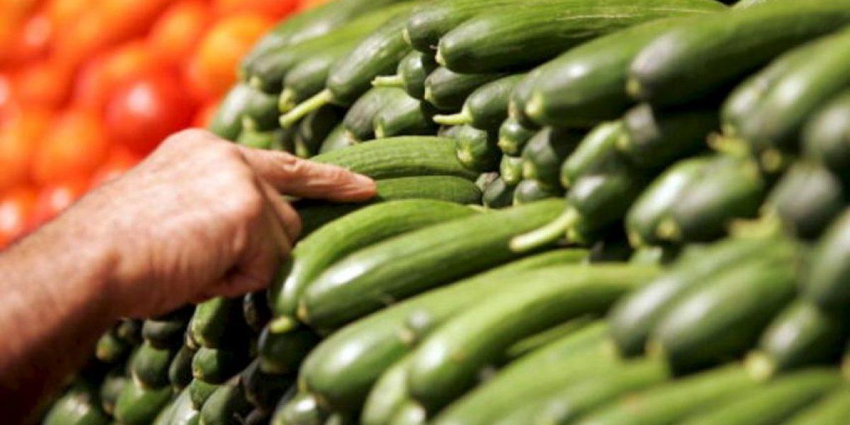 [GALERÍA] Conoce las 8 razones para comer pepino