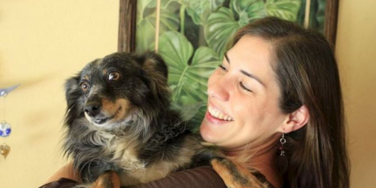 9 cosas que deben pensar antes de adoptar una mascota