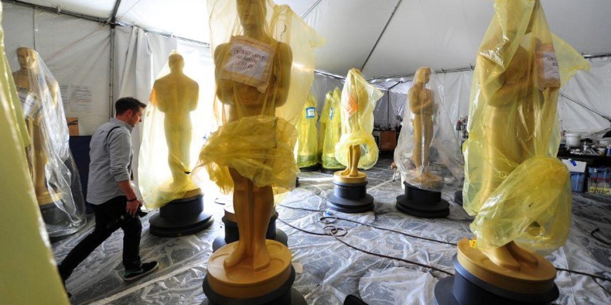 Perdedores del Oscar tendran premios de consuelo, que incluyen un rejuvenecimiento vaginal