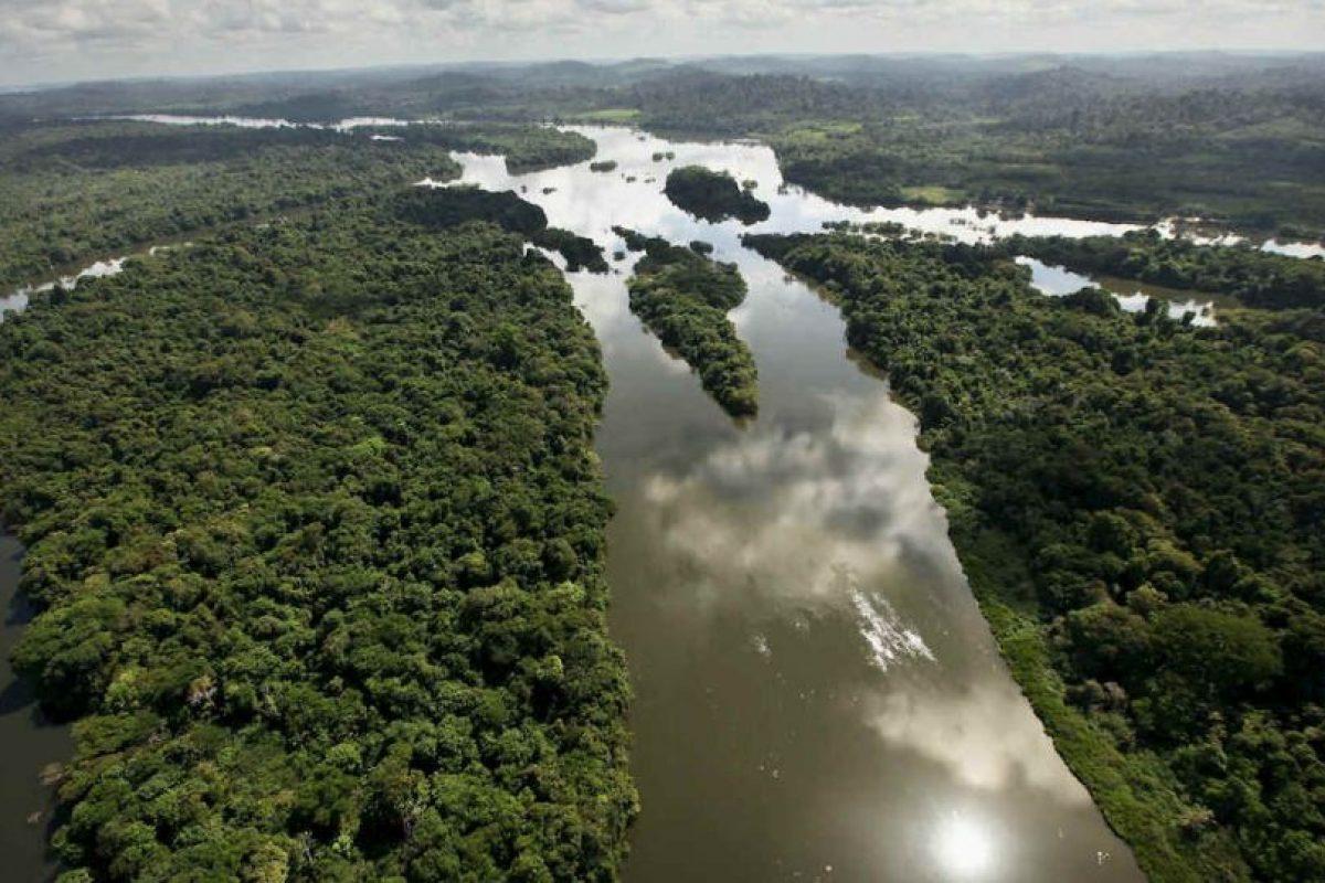 Amazonas Foto:Getty Images. Imagen Por: