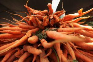 Además, las zanahorias ayudan a proteger la piel cuando se expone al sol. Foto:Getty. Imagen Por: