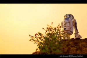 Foto:Zahir Batin – Zahirphotowork. Imagen Por: