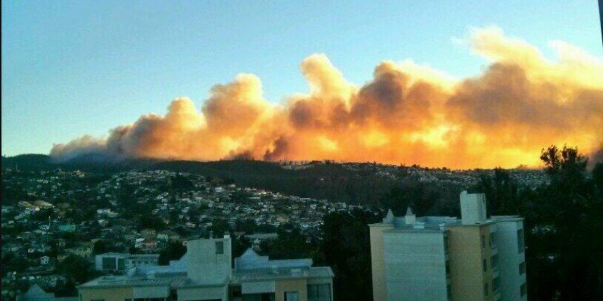 Fotos: Decretan alerta roja por incendio forestal en camino La Pólvora en Valparaíso
