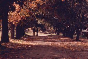 """""""Amar no es mirarse el uno al otro; es mirar juntos en la misma dirección"""". Antoine de Saint-Exupery. Foto:Wikipedia Commons. Imagen Por:"""