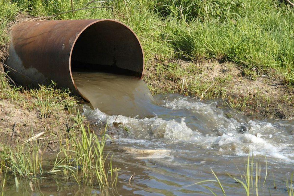 Investigación sobre el agua contaminada del Washington Daily News. Foto:Wikipedia Commons. Imagen Por: