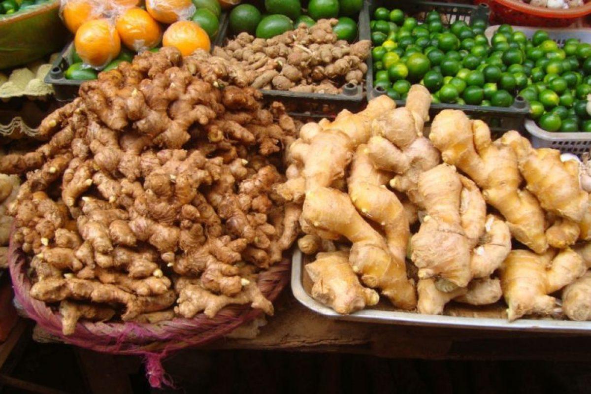 Comer jengibre es una buena opción. Foto:Wikipedia. Imagen Por: