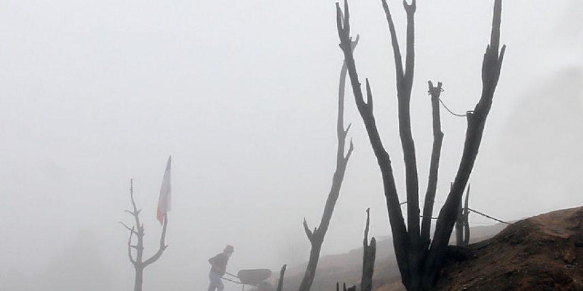Fotos: Conaf, Onemi y Bomberos continúan combate de incendio forestal en Santo Domingo