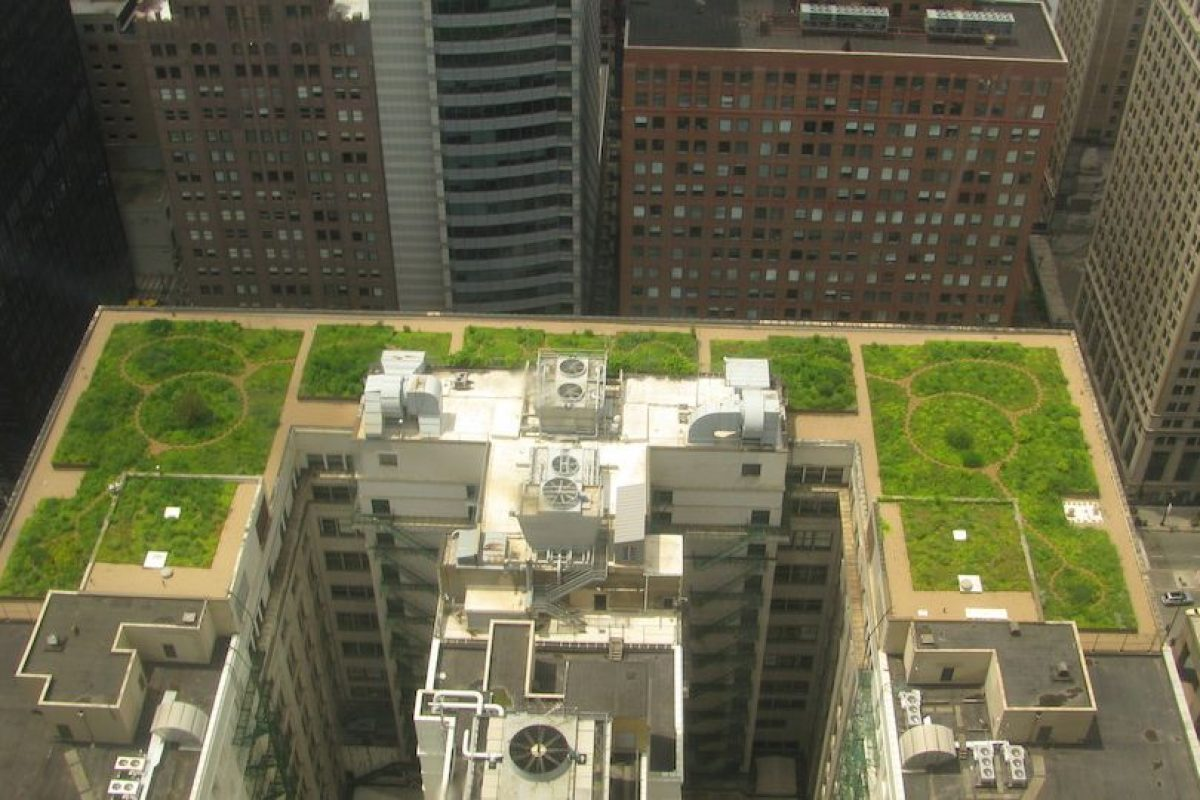 Apoyar a los Códigos de Construcción Verde Foto:Wkipedia Commons. Imagen Por: