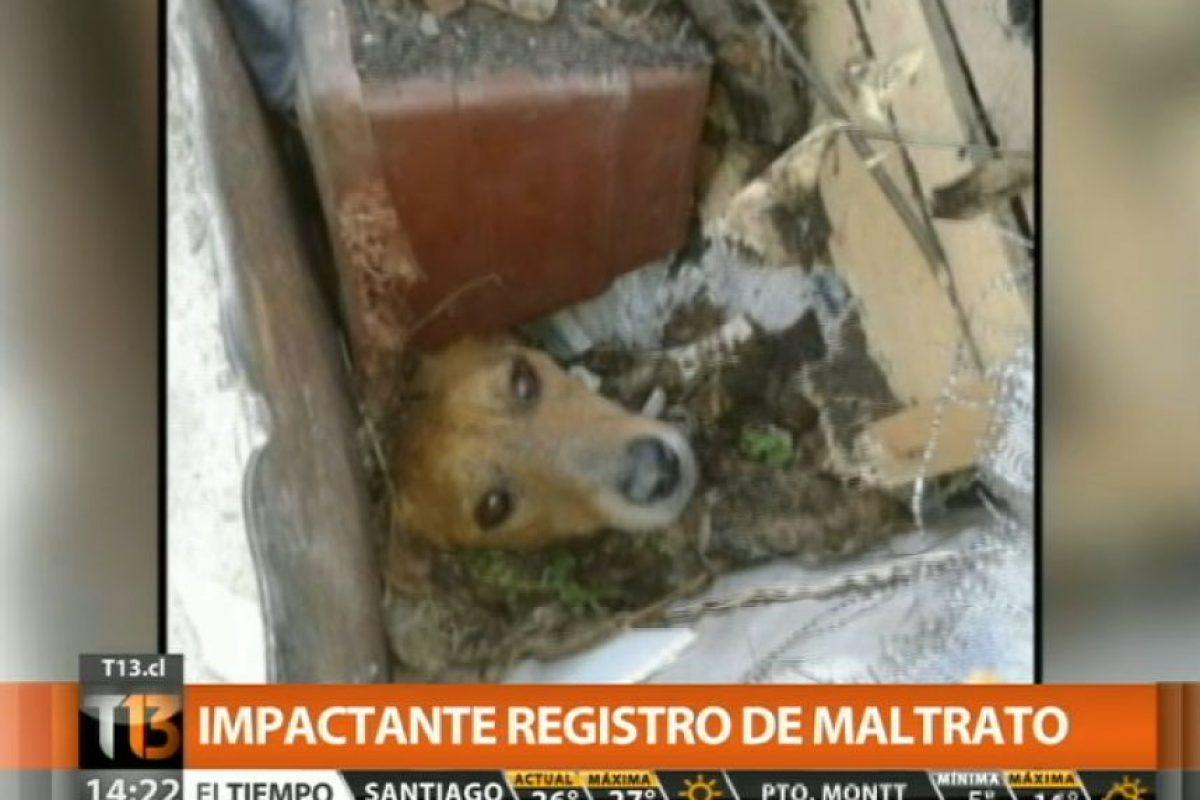 Foto:Captura de Pantalla Canal 13. Imagen Por:
