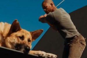Foto:Youtube / MovieClips. Imagen Por: