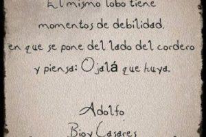 Adolfo Bioy Casares Foto:Tumblr. Imagen Por: