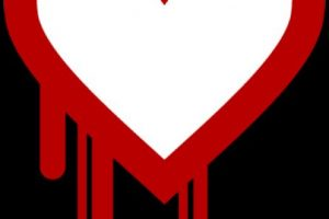 agent.btz: Gracias a este virus EU creó el Cyber Command para evitar su propagación Foto:Heartbleed. Imagen Por:
