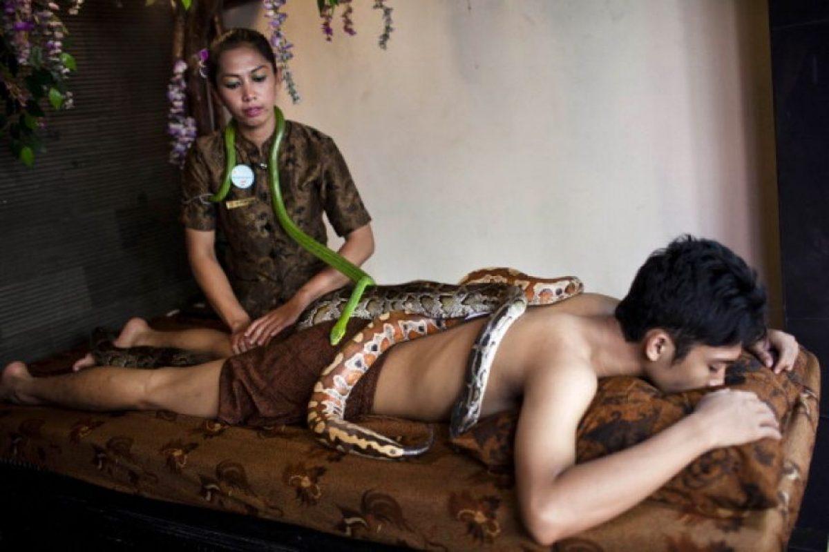 En Israel es común recibir un masaje con serpientes Foto:Getty. Imagen Por: