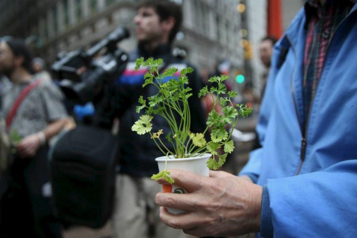 Las cosas antinaturales causan cáncer Foto:Getty Images. Imagen Por: