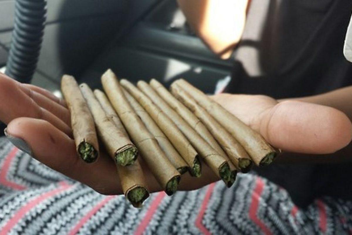 Los bommberos en denver recibirán entrenamiento especial para incendios en el cultivo de marihuana Foto:Tumrbl. Imagen Por: