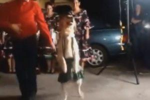 ¡El perro es la mejor pareja de baile del hombre! Foto:YouTube. Imagen Por: