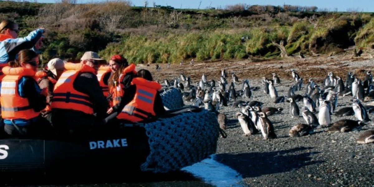 Conoce las nuevas rutas que tendrá por la patagonia el crucero