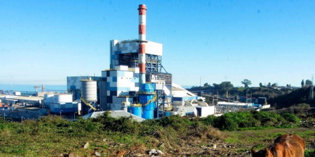 Endesa recibe multa de $4.378 millones por central termoeléctrica Bocamina