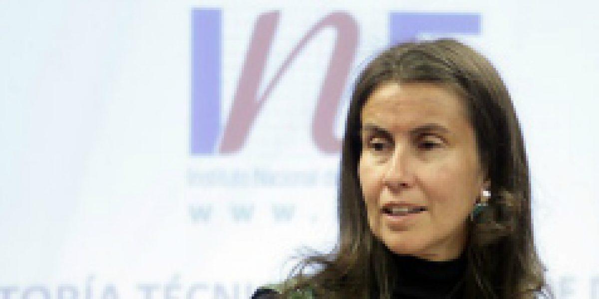Directora del INE asegura que equipos del Censo 2017 continúan trabajando según lo planificado