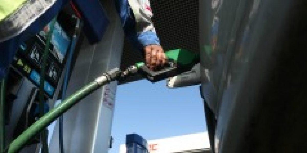 Enap: precio de la bencina de 97 octanos es el único que sube este jueves