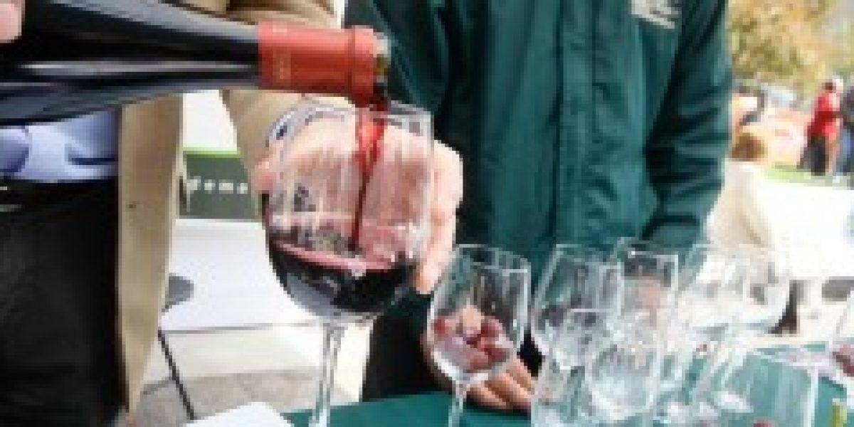 Argentina será el mayor productor de vinos del cono sur en 2014